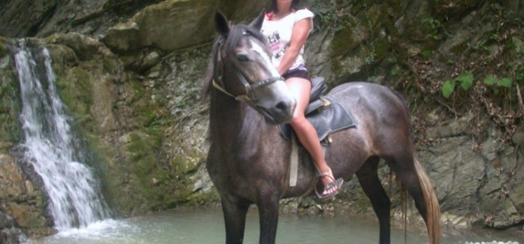 Конные прогулки в Небуге